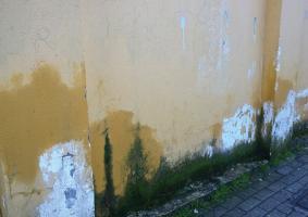 1.1 Έντονη υγρασία εμφανής με μαυρίλες και αποσαθρωμένα σημεία σε επίπεδο εδάφους, σε εξωτερικό τοίχο ισογείου - Κεντρική Εικόνα