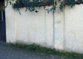 1.2 Τριχοειδείς ρωγμές σε εξωτερική τοιχοποιία από σοβά (≤ 0,6mm) - Κεντρική Εικόνα