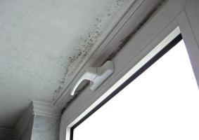 3.4 Εμφάνιση μούχλας και μαύρων στιγμάτων στο ταβάνι του μπάνιου - κουζίνας - Κεντρική Εικόνα