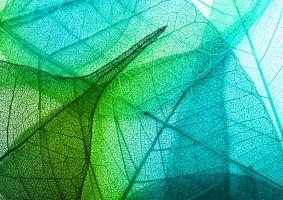 Τι εννοούμε όταν μιλάμε για χρώματα φιλικά στο χρήστη και στο περιβάλλον;  - Κεντρική Εικόνα