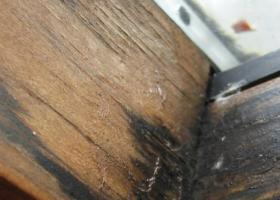 Δημιουργία μούχλας ή μαύρων στιγμάτων σε επιφάνεια από ξύλο