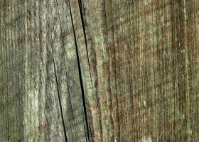 Ύπαρξη μικρών ή βαθύτερων ρωγμών στην επιφάνεια του ξύλου