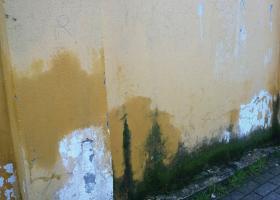 Έντονη υγρασία εμφανής με μαυρίλες και αποσαθρωμένα σημεία σε επίπεδο εδάφους, σε εξωτερικό τοίχο ισογείου