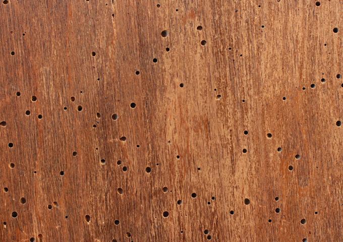 Μικροζημιές σε ξύλινα και μεταλλικά αντικείμενα - Κεντρική Εικόνα